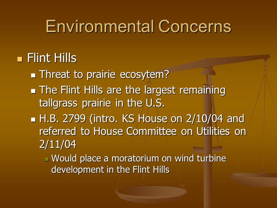 Environmental Concerns Flint Hills Flint Hills Threat to prairie ecosytem? Threat to prairie ecosytem? The Flint Hills are the largest remaining tallg
