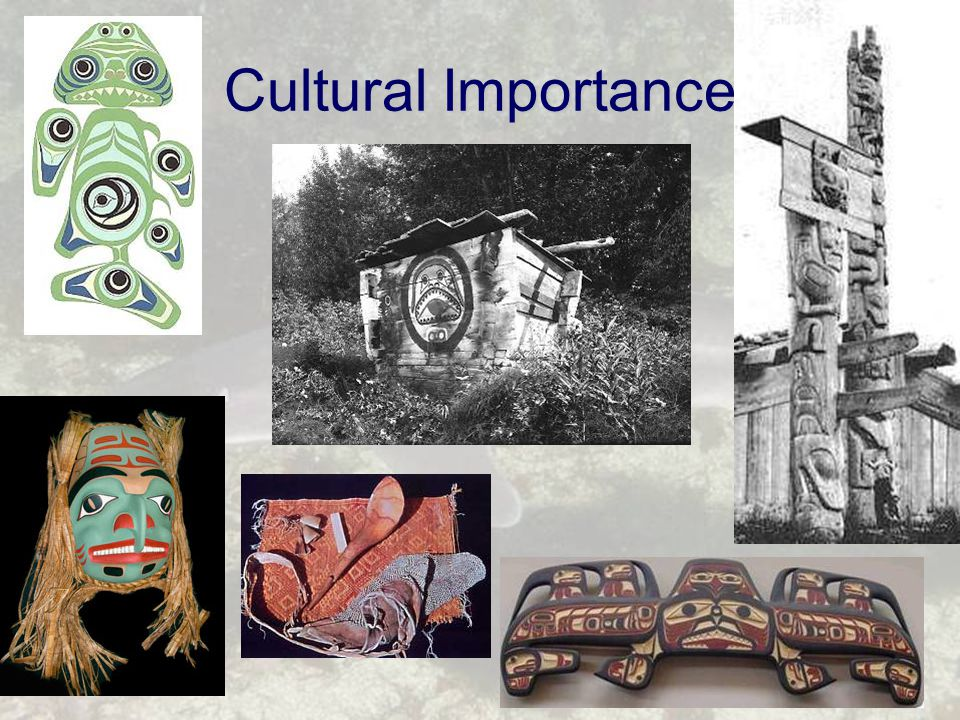Cultural Importance