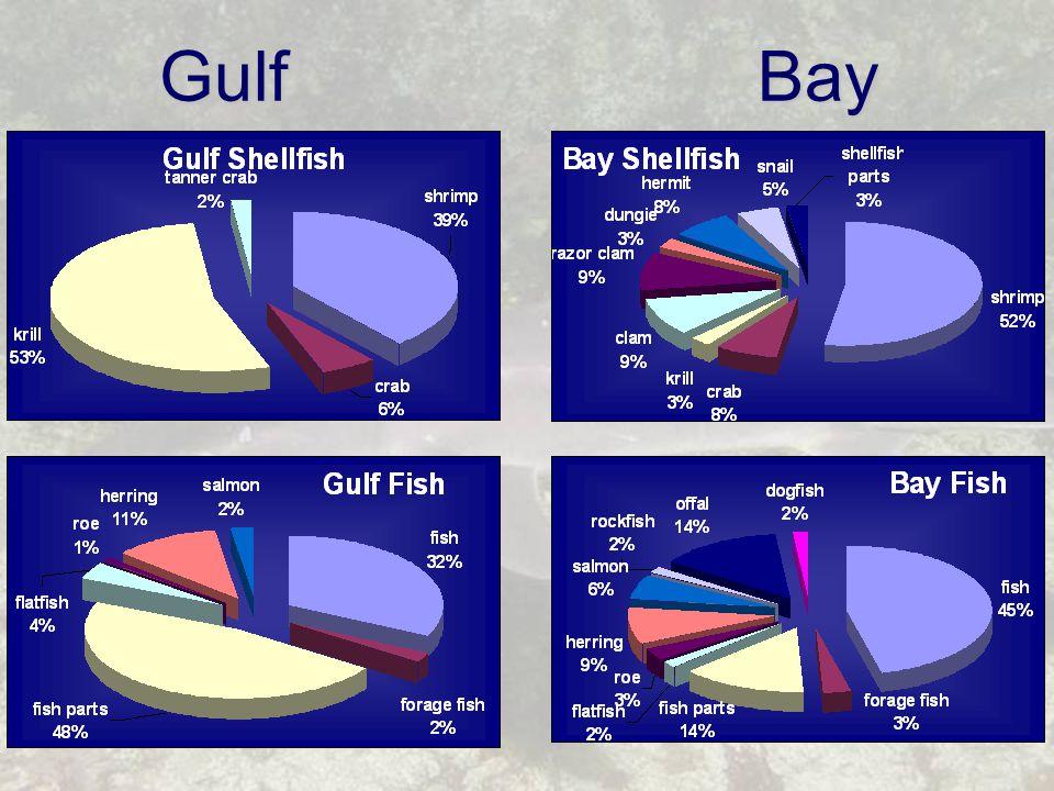 Gulf Bay