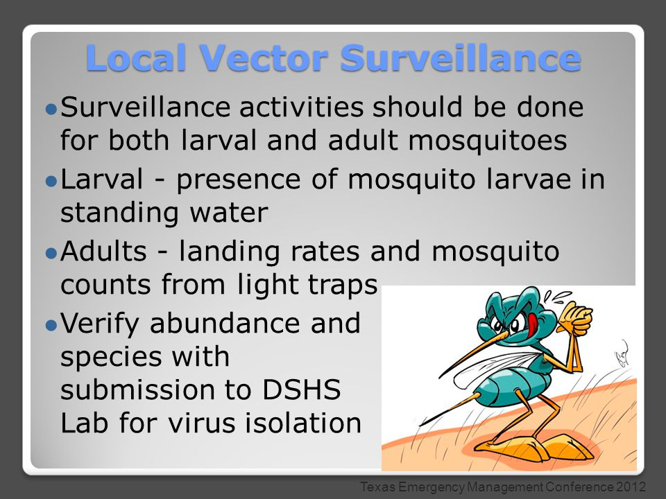 ● Surveillance activities should be done for both larval and adult mosquitoes ● Larval - presence of mosquito larvae in standing water ● Adults - landing rates and mosquito counts from light traps ● Verify abundance and species with submission to DSHS Lab for virus isolation Local Vector Surveillance Texas Emergency Management Conference 2012