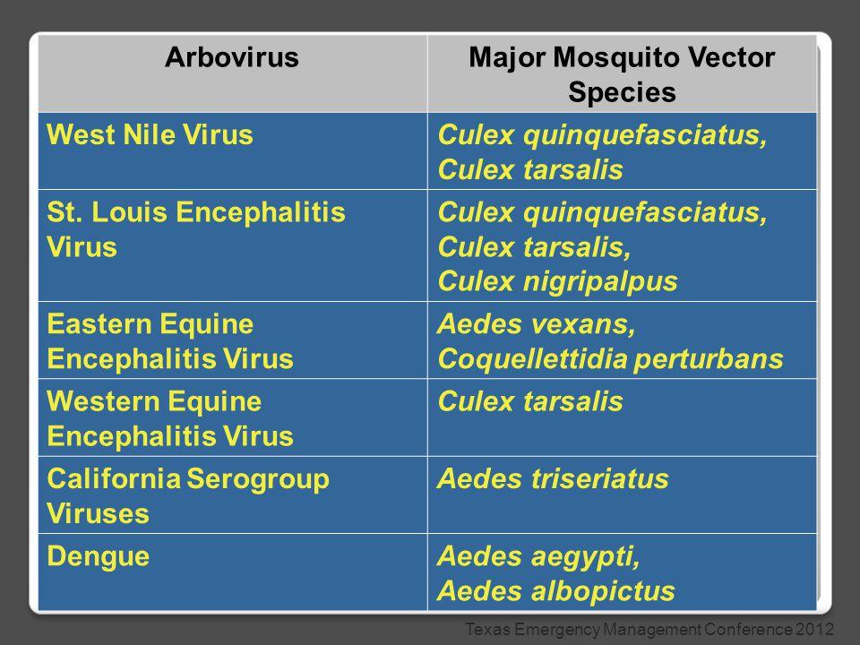 ArbovirusMajor Mosquito Vector Species West Nile VirusCulex quinquefasciatus, Culex tarsalis St.