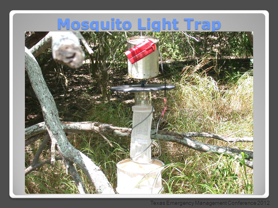 Mosquito Light Trap Texas Emergency Management Conference 2012