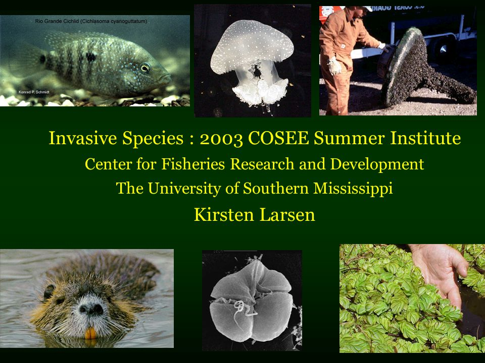 Invasive Species : 2003 COSEE Summer Institute Center for Fisheries Research and Development The University of Southern Mississippi Kirsten Larsen