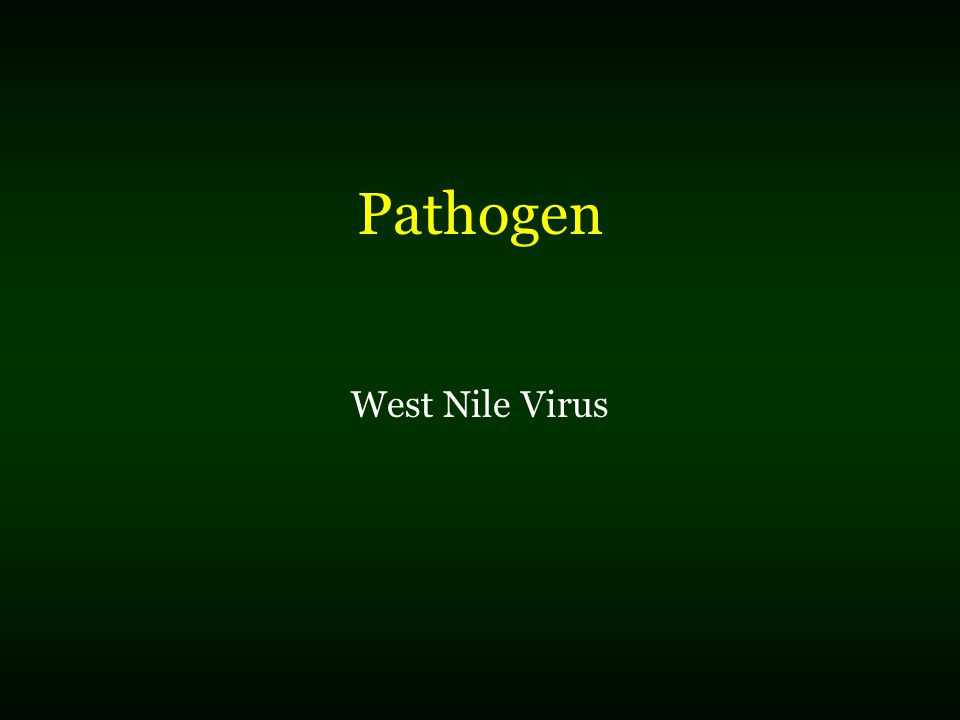 Pathogen West Nile Virus