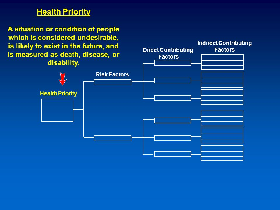 Risk Factors Health Priority Indirect Contributing Factors Direct Contributing Factors Health Priority A situation or condition of people which is considered undesirable, is likely to exist in the future, and is measured as death, disease, or disability.