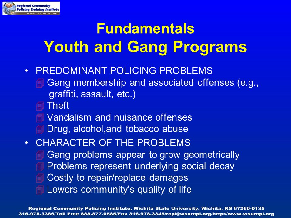 Fundamentals Youth and Gang Programs PREDOMINANT POLICING PROBLEMS  Gang membership and associated offenses (e.g., graffiti, assault, etc.)  Theft  Vandalism and nuisance offenses  Drug, alcohol,and tobacco abuse CHARACTER OF THE PROBLEMS  Gang problems appear to grow geometrically  Problems represent underlying social decay  Costly to repair/replace damages  Lowers community's quality of life