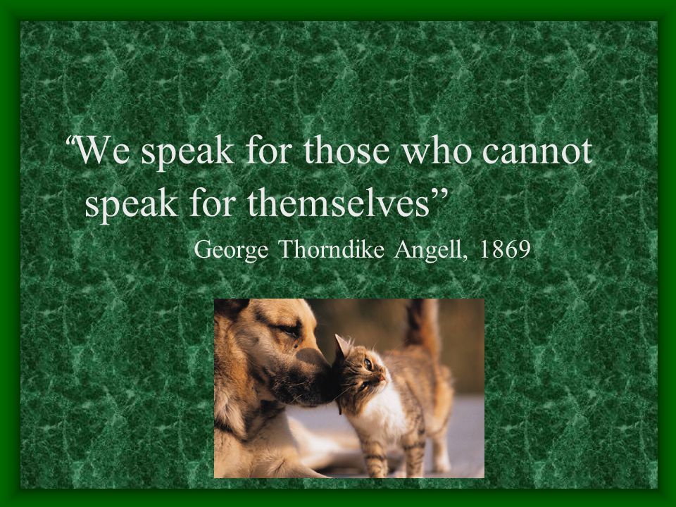 """"""" We speak for those who cannot speak for themselves"""" George Thorndike Angell, 1869"""