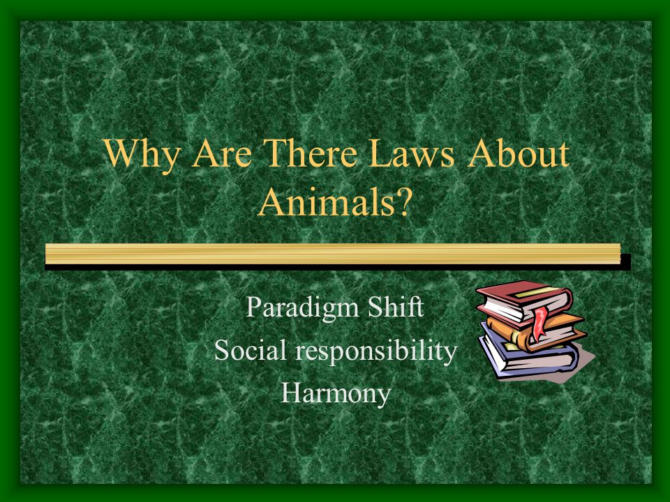 Why Are There Laws About Animals? Paradigm Shift Social responsibility Harmony