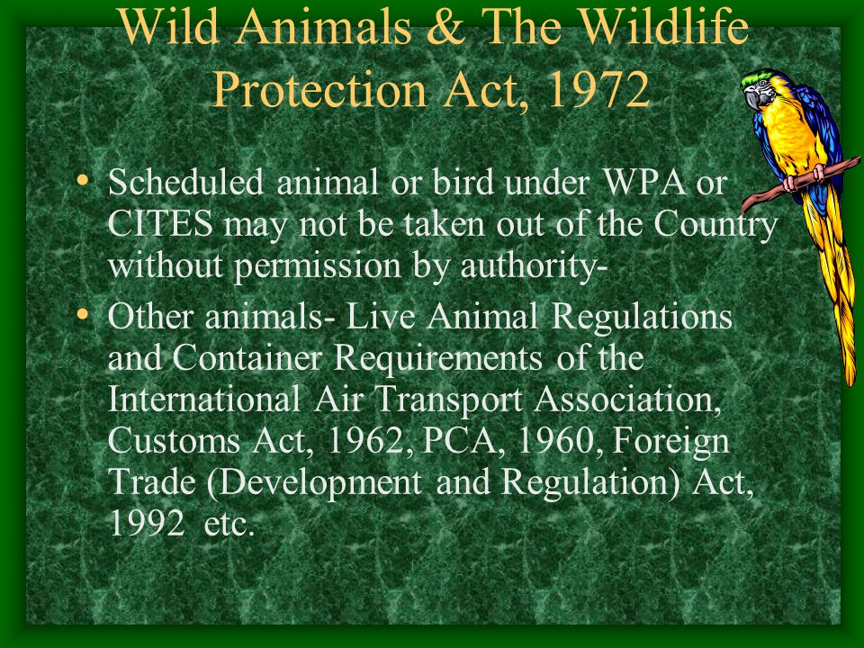 Wild Animals & The Wildlife Protection Act, 1972 Scheduled animal or bird under WPA or CITES may not be taken out of the Country without permission by
