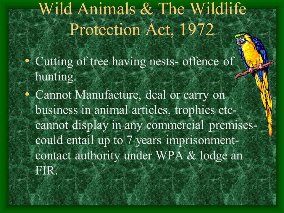 Wild Animals & The Wildlife Protection Act, 1972 Cutting of tree having nests- offence of hunting. Cannot Manufacture, deal or carry on business in an