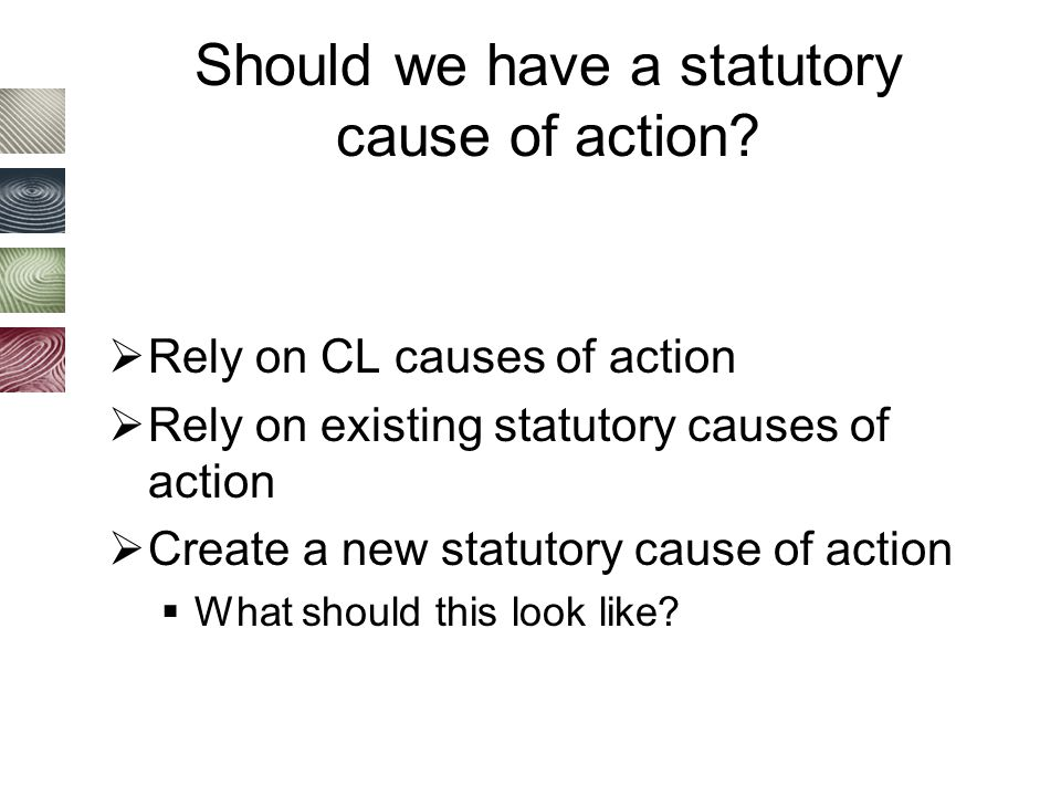 Should we have a statutory cause of action.