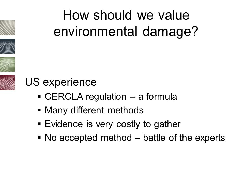 How should we value environmental damage.