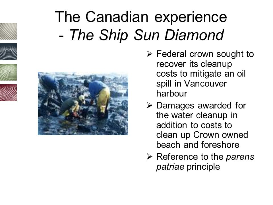 The Canadian experience - The Ship Sun Diamond  Federal crown sought to recover its cleanup costs to mitigate an oil spill in Vancouver harbour  Damages awarded for the water cleanup in addition to costs to clean up Crown owned beach and foreshore  Reference to the parens patriae principle