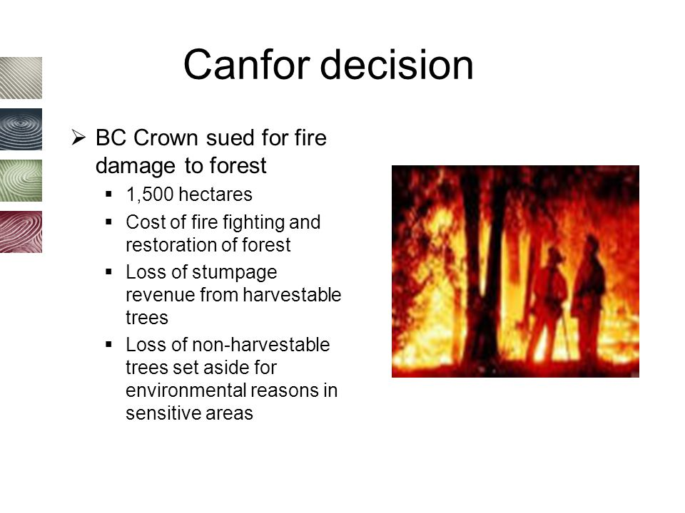 Canfor decision  BC Crown sued for fire damage to forest  1,500 hectares  Cost of fire fighting and restoration of forest  Loss of stumpage revenue from harvestable trees  Loss of non-harvestable trees set aside for environmental reasons in sensitive areas
