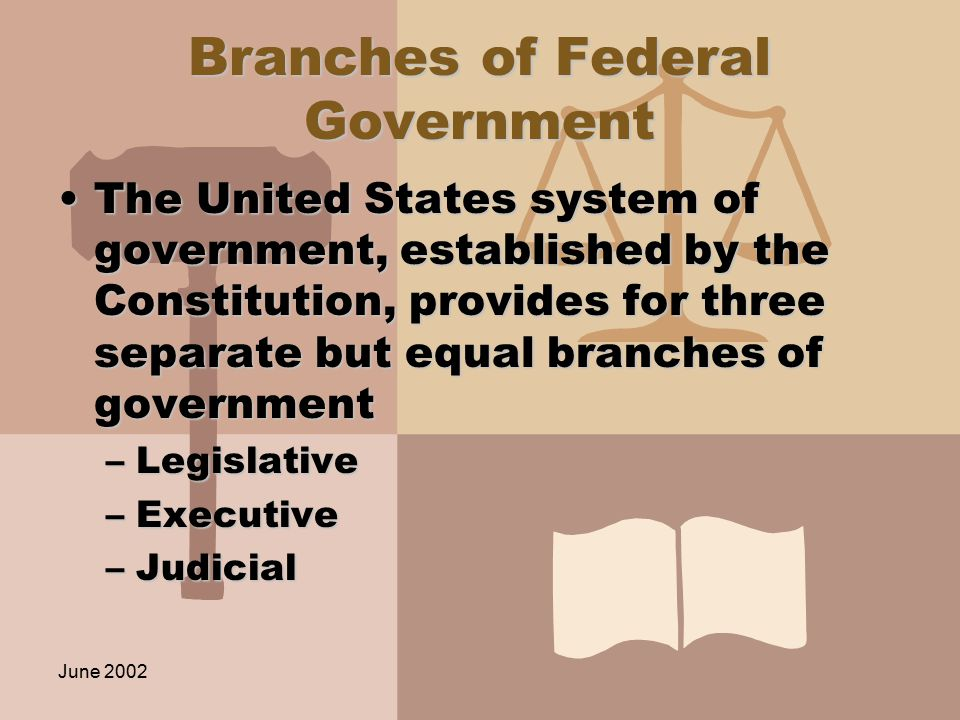 June 2002 Branches of Federal Government The United States system of government, established by the Constitution, provides for three separate but equal branches of governmentThe United States system of government, established by the Constitution, provides for three separate but equal branches of government –Legislative –Executive –Judicial