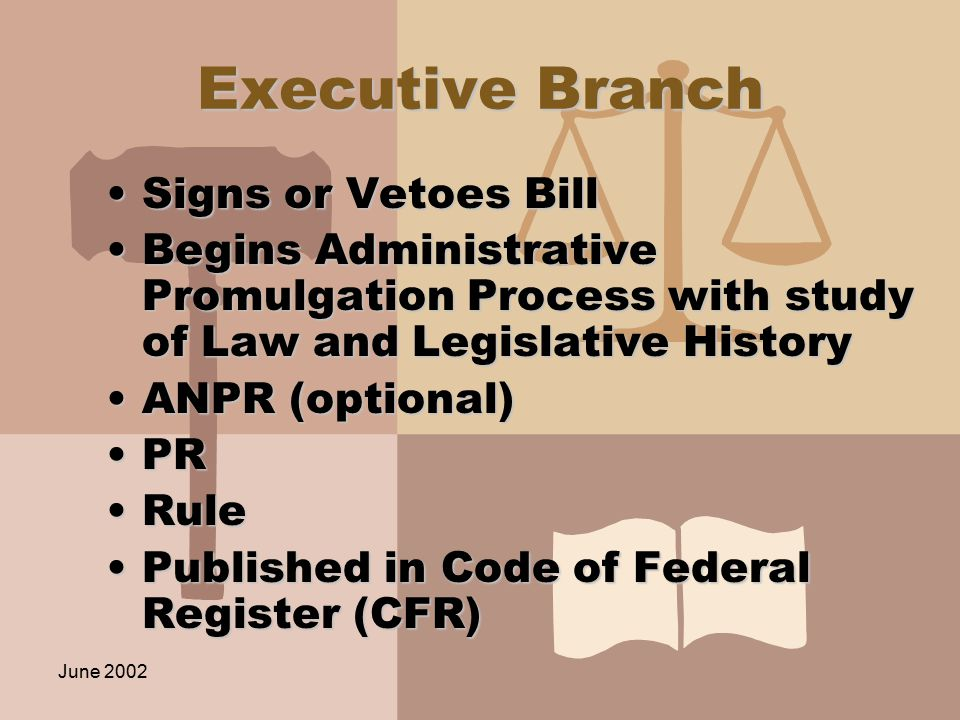 June 2002 Executive Branch Signs or Vetoes BillSigns or Vetoes Bill Begins Administrative Promulgation Process with study of Law and Legislative HistoryBegins Administrative Promulgation Process with study of Law and Legislative History ANPR (optional)ANPR (optional) PRPR RuleRule Published in Code of Federal Register (CFR)Published in Code of Federal Register (CFR)