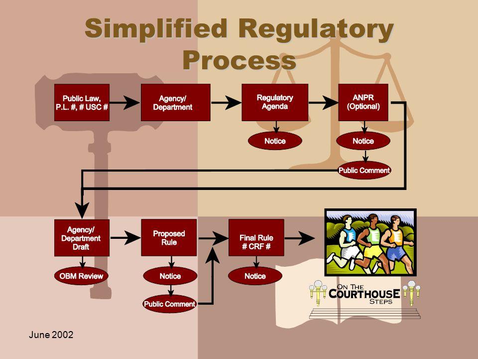 June 2002 Simplified Regulatory Process
