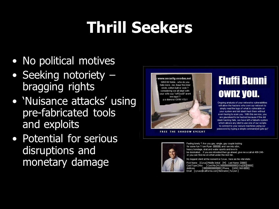 Thrill Seekers No political motives Seeking notoriety – bragging rights 'Nuisance attacks' using pre-fabricated tools and exploits Potential for serious disruptions and monetary damage No political motives Seeking notoriety – bragging rights 'Nuisance attacks' using pre-fabricated tools and exploits Potential for serious disruptions and monetary damage
