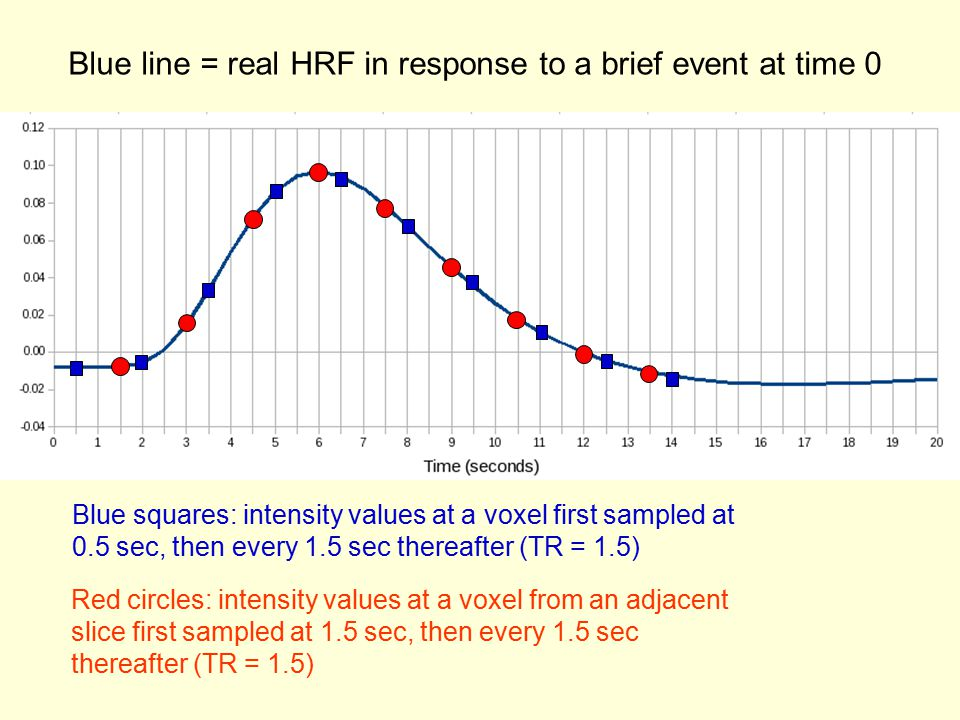 Blue line = real HRF in response to a brief event at time 0 Blue squares: intensity values at a voxel first sampled at 0.5 sec, then every 1.5 sec thereafter (TR = 1.5) Red circles: intensity values at a voxel from an adjacent slice first sampled at 1.5 sec, then every 1.5 sec thereafter (TR = 1.5)