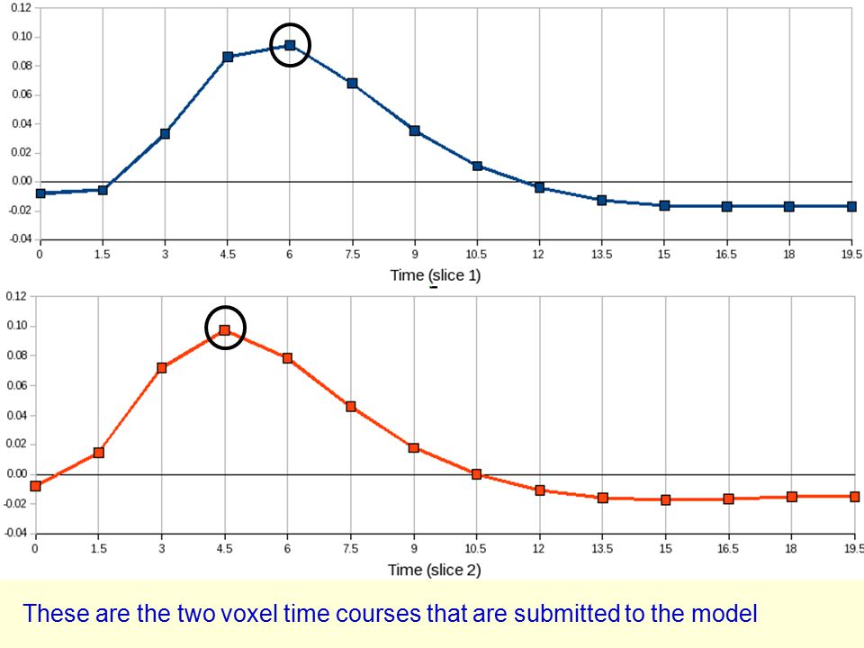 These are the two voxel time courses that are submitted to the model