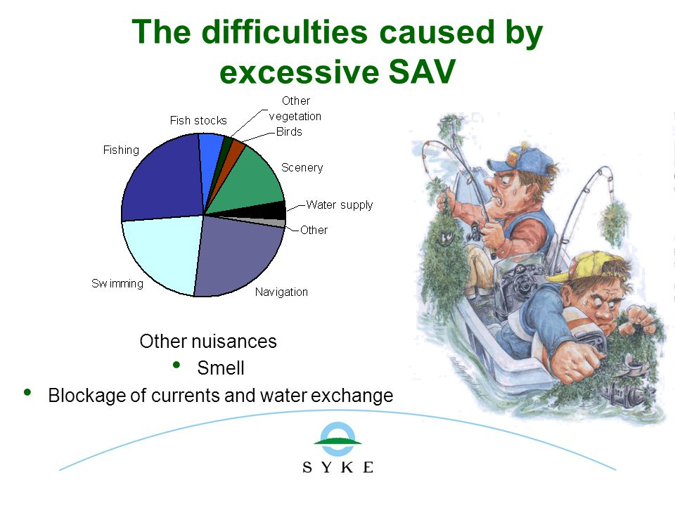 The difficulties caused by excessive SAV Other nuisances Smell Blockage of currents and water exchange