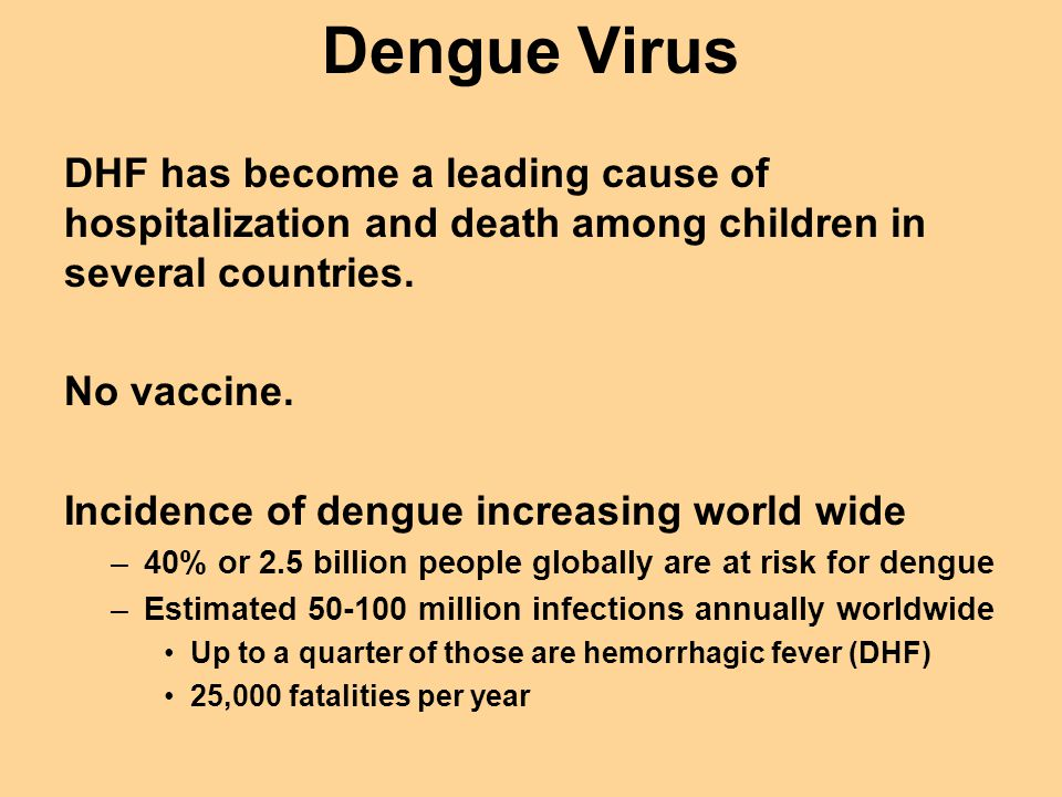 Dengue Virus DHF has become a leading cause of hospitalization and death among children in several countries. No vaccine. Incidence of dengue increasi