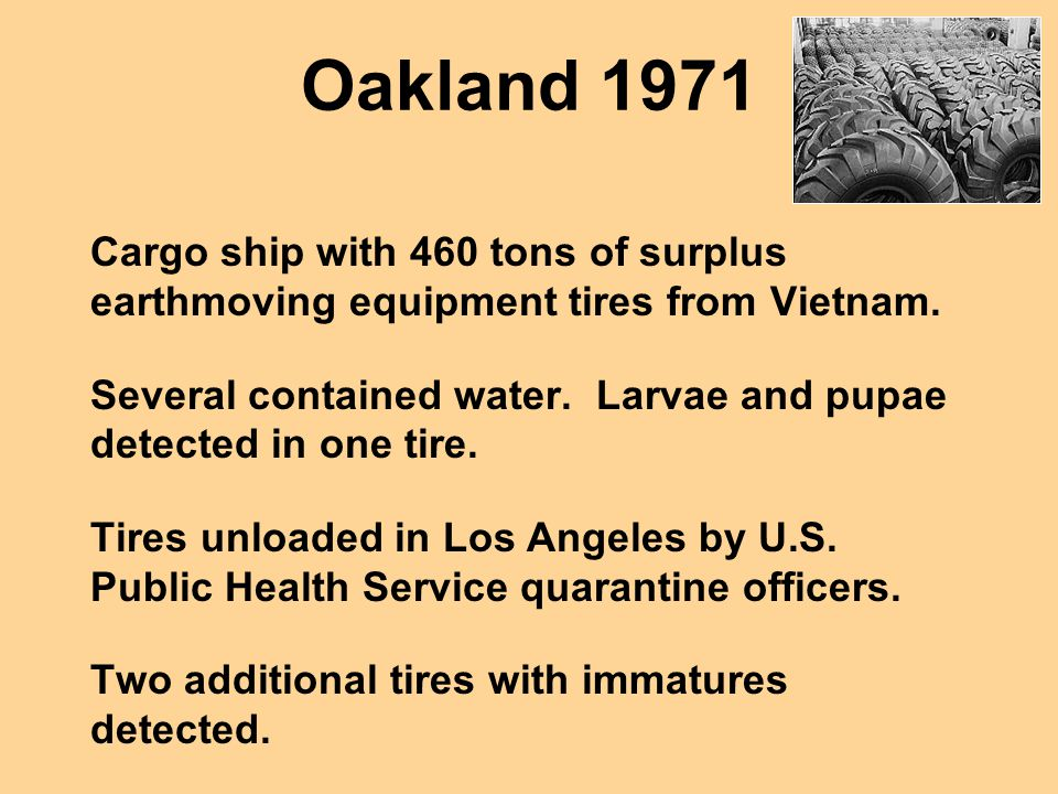 Oakland 1971 Cargo ship with 460 tons of surplus earthmoving equipment tires from Vietnam. Several contained water. Larvae and pupae detected in one t