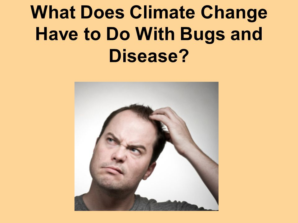 What Does Climate Change Have to Do With Bugs and Disease?