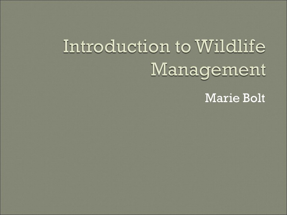  Address complex issues with both research and management skills by Reviewing the scientific literature Finding answers with field &/or lab work Implementing and evaluating remedies  Political, social & economic factors influence methods and how successfully they can deal with stewardship of wildlife populations and habitats