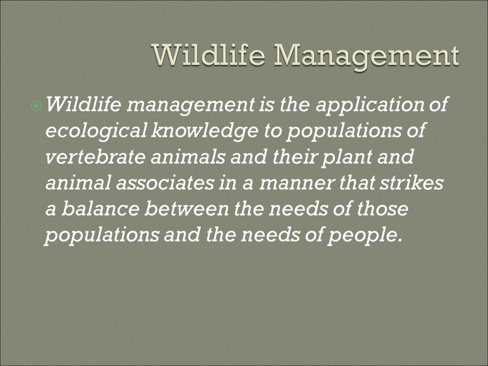  Wildlife management is the application of ecological knowledge to populations of vertebrate animals and their plant and animal associates in a manner that strikes a balance between the needs of those populations and the needs of people.