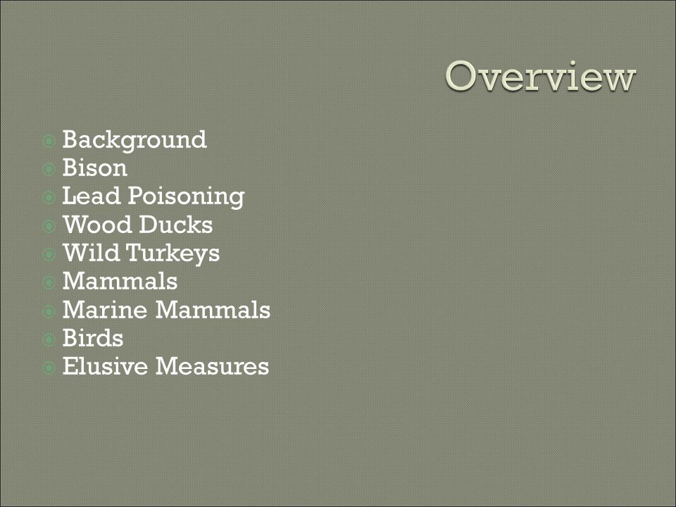 Background  Bison  Lead Poisoning  Wood Ducks  Wild Turkeys  Mammals  Marine Mammals  Birds  Elusive Measures