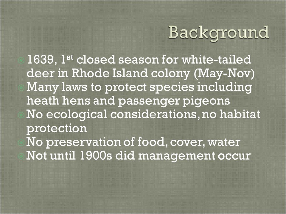  1639, 1 st closed season for white-tailed deer in Rhode Island colony (May-Nov)  Many laws to protect species including heath hens and passenger pi