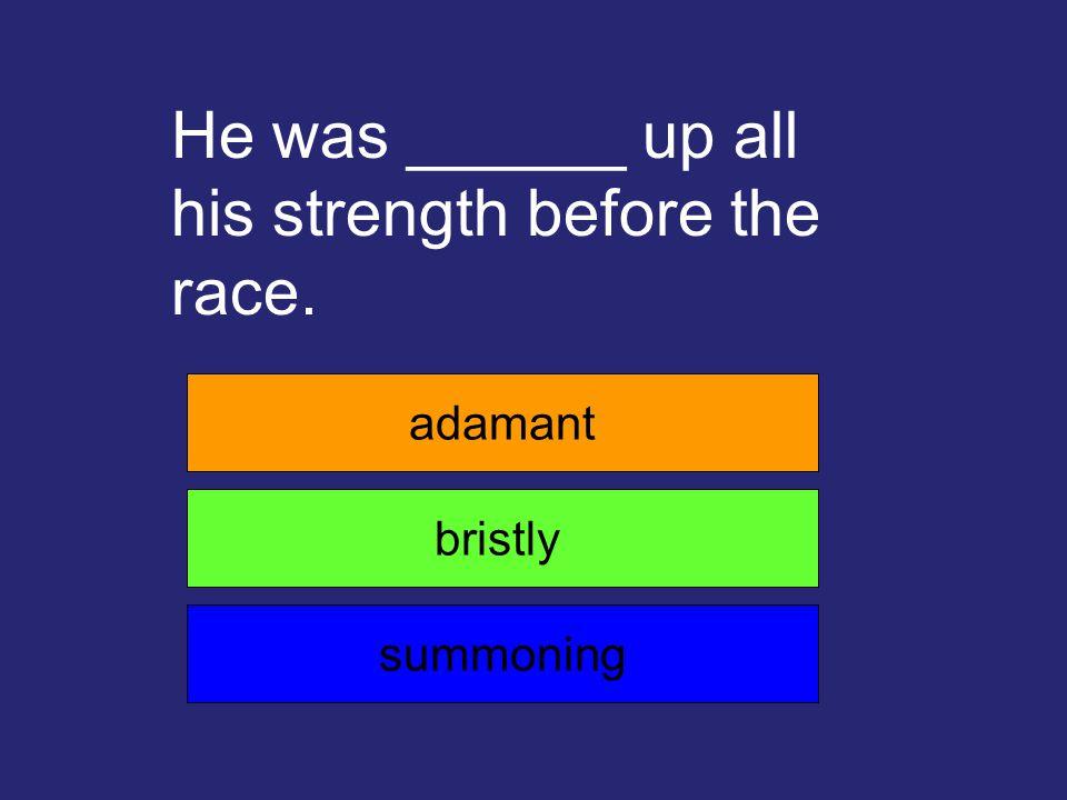 My mom was _______ that I do my homework before I watch TV. adamant boasting inevitable