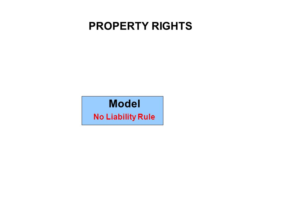 PROPERTY RIGHTS Model No Liability Rule