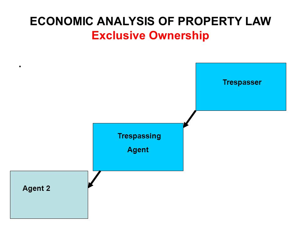 ECONOMIC ANALYSIS OF PROPERTY LAW Exclusive Ownership. Agent 2 Trespasser Trespassing Agent