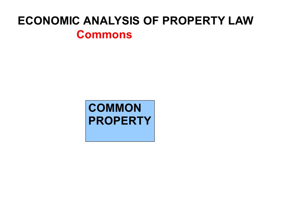 ECONOMIC ANALYSIS OF PROPERTY LAW Commons COMMON PROPERTY