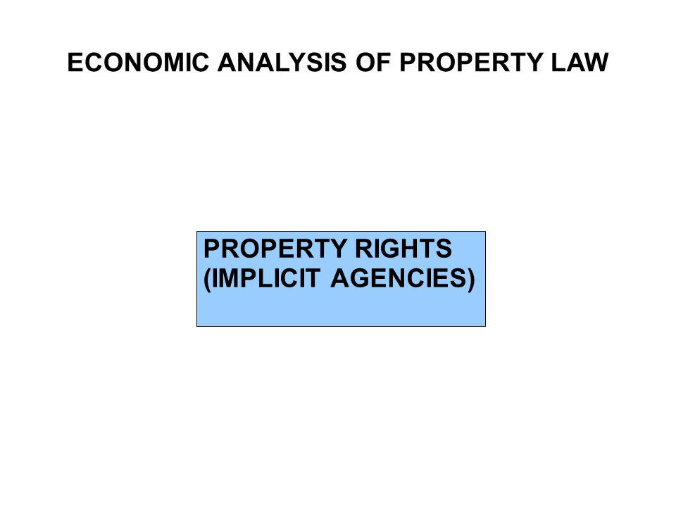 ECONOMIC ANALYSIS OF PROPERTY LAW PROPERTY RIGHTS (IMPLICIT AGENCIES)
