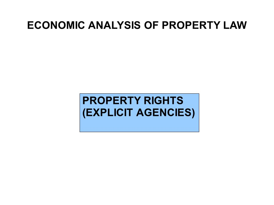 ECONOMIC ANALYSIS OF PROPERTY LAW PROPERTY RIGHTS (EXPLICIT AGENCIES)