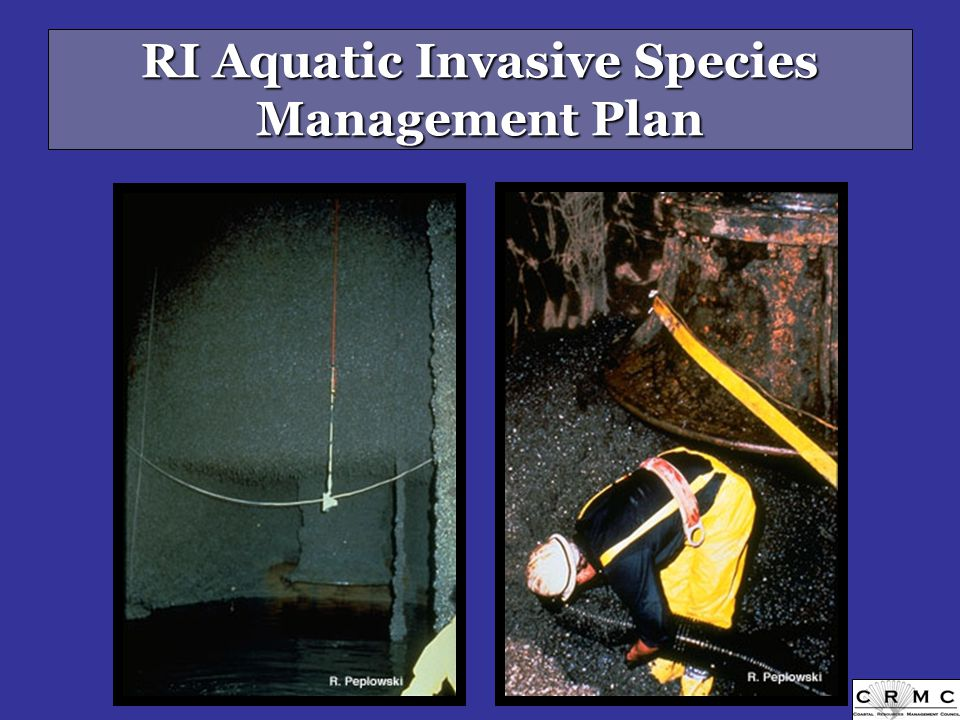 RI Aquatic Invasive Species Management Plan