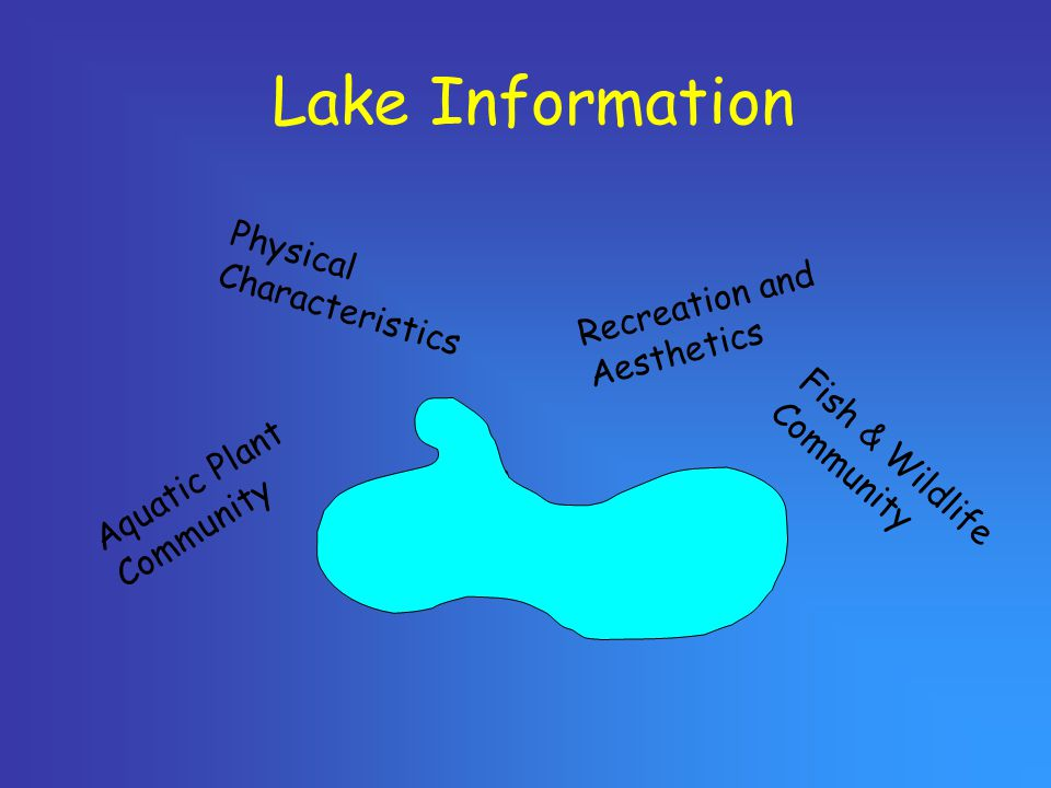Lake Information Aquatic Plant Community Physical Characteristics Recreation and Aesthetics Fish & Wildlife Community
