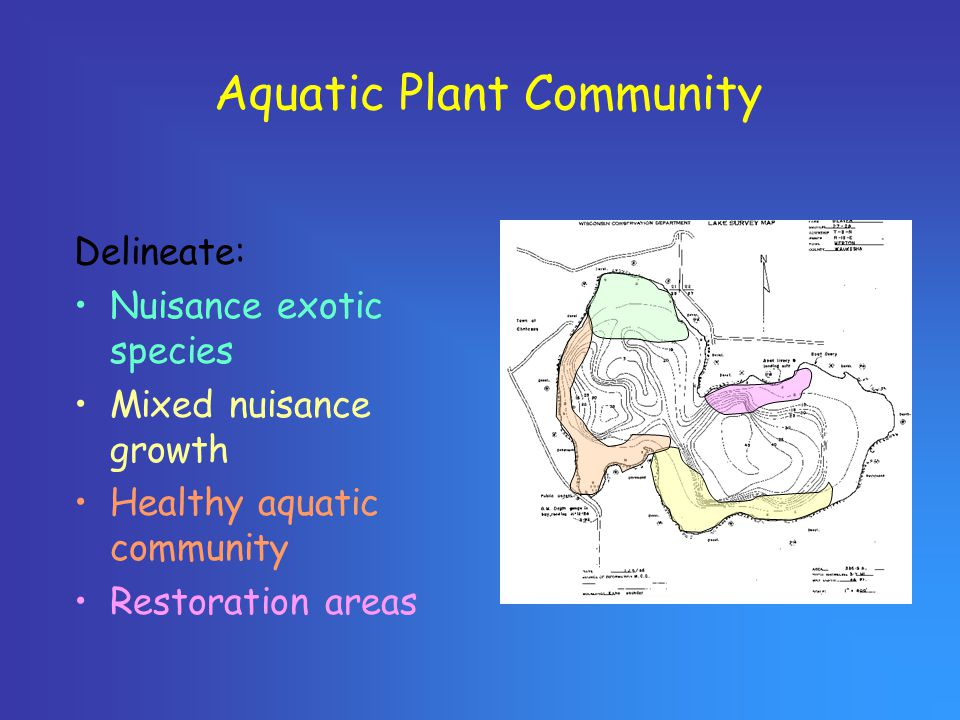 Aquatic Plant Community Delineate: Nuisance exotic species Mixed nuisance growth Healthy aquatic community Restoration areas