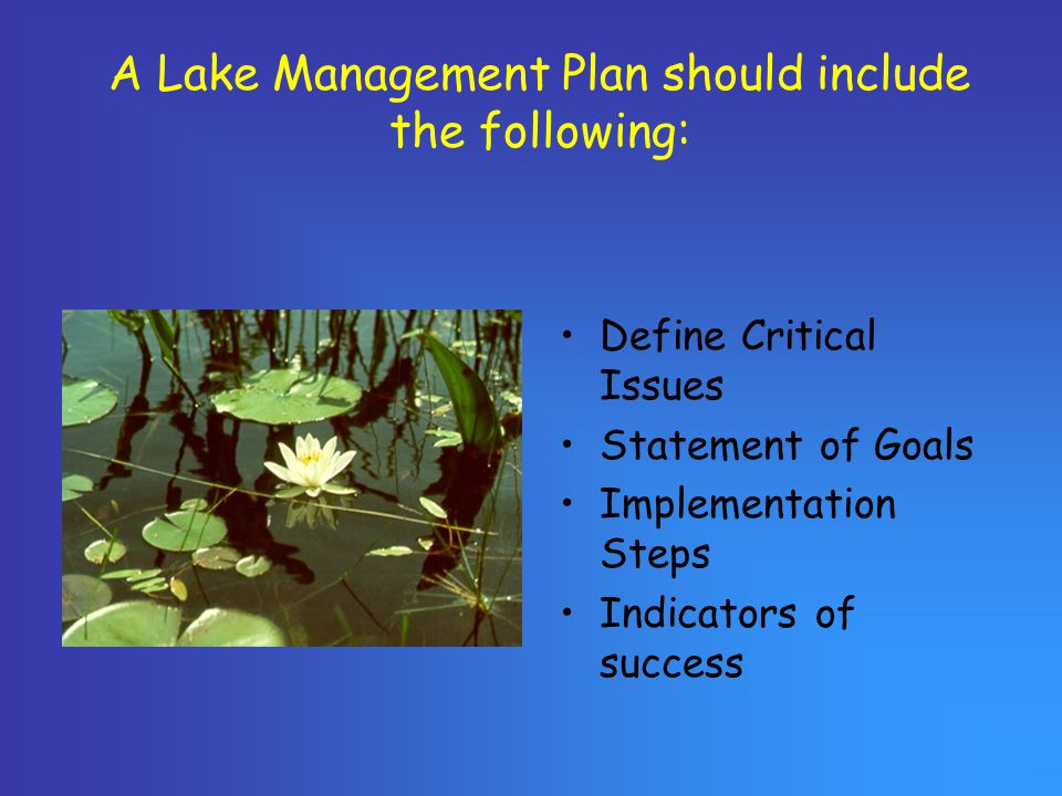 A Lake Management Plan should include the following: Define Critical Issues Statement of Goals Implementation Steps Indicators of success