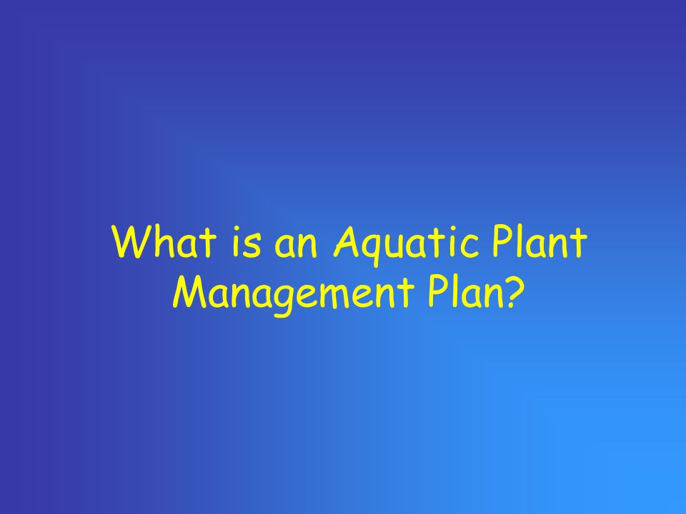 What is an Aquatic Plant Management Plan?