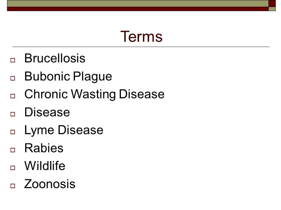 Terms  Brucellosis  Bubonic Plague  Chronic Wasting Disease  Disease  Lyme Disease  Rabies  Wildlife  Zoonosis