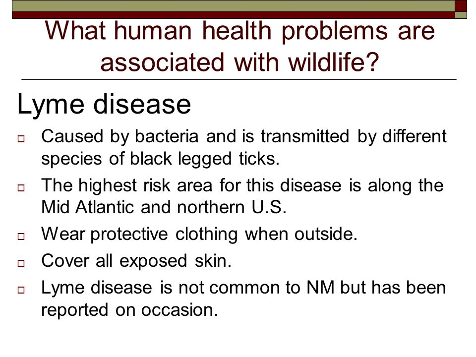 What human health problems are associated with wildlife.
