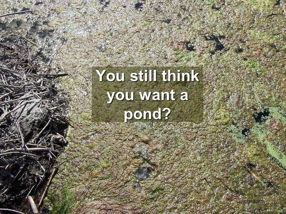 You still think you want a pond? USDA NRCS
