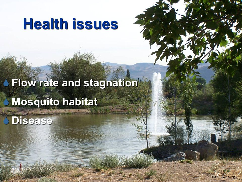 Health issues  Flow rate and stagnation  Mosquito habitat  Disease UNCE, Reno, Nev.