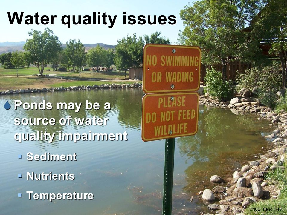 Water quality issues  Ponds may be a source of water quality impairment  Sediment  Nutrients  Temperature UNCE, Reno, Nev.