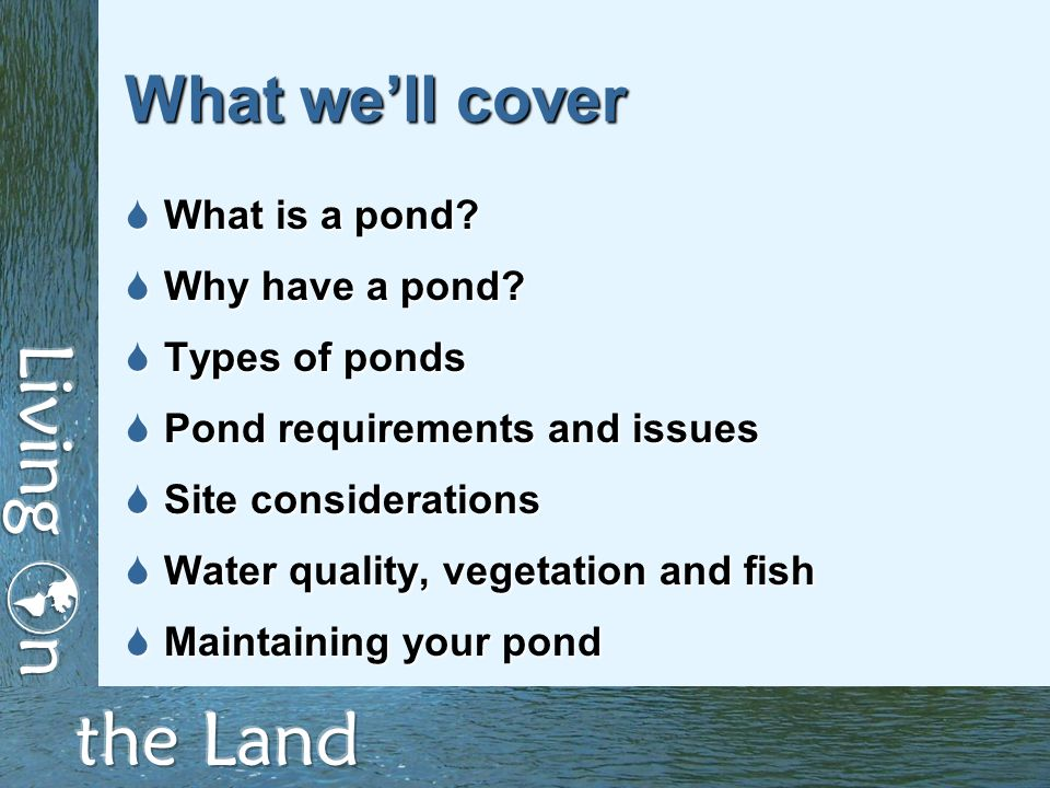 What we'll cover  What is a pond.  Why have a pond.