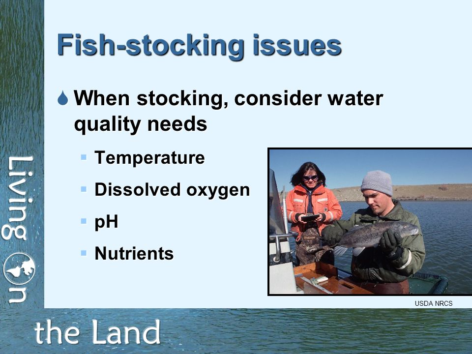 Fish-stocking issues  When stocking, consider water quality needs  Temperature  Dissolved oxygen  pH  Nutrients USDA NRCS